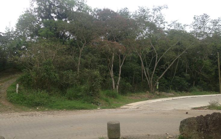 Foto de terreno habitacional en venta en  , fuentes de las ánimas, xalapa, veracruz de ignacio de la llave, 1100129 No. 10