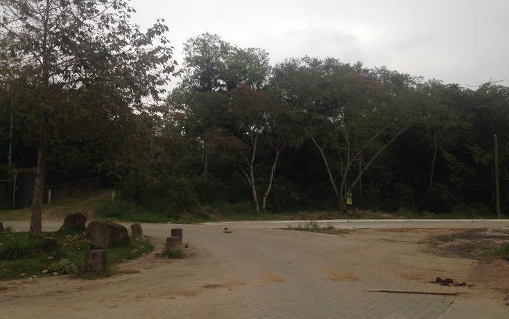 Foto de terreno habitacional en venta en  , fuentes de las ánimas, xalapa, veracruz de ignacio de la llave, 1100129 No. 13