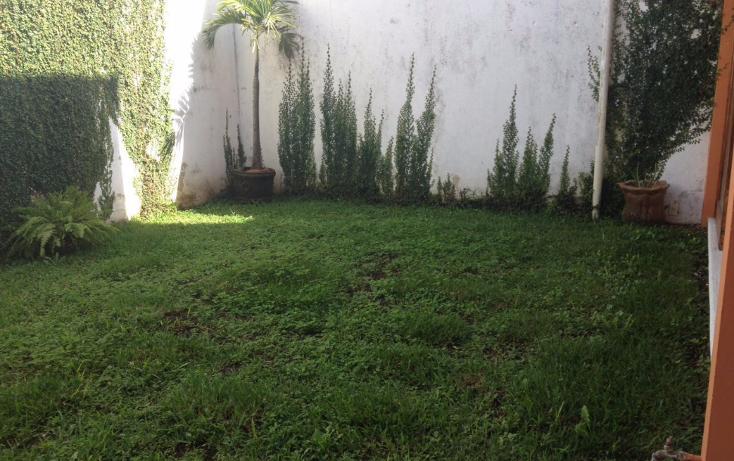 Foto de oficina en renta en  , fuentes de las ?nimas, xalapa, veracruz de ignacio de la llave, 1977406 No. 06