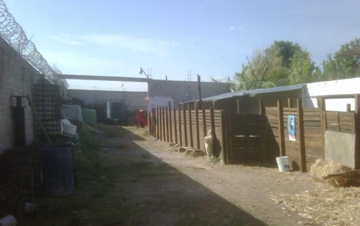 Foto de terreno habitacional en venta en  , fundación, apaseo el grande, guanajuato, 448259 No. 05