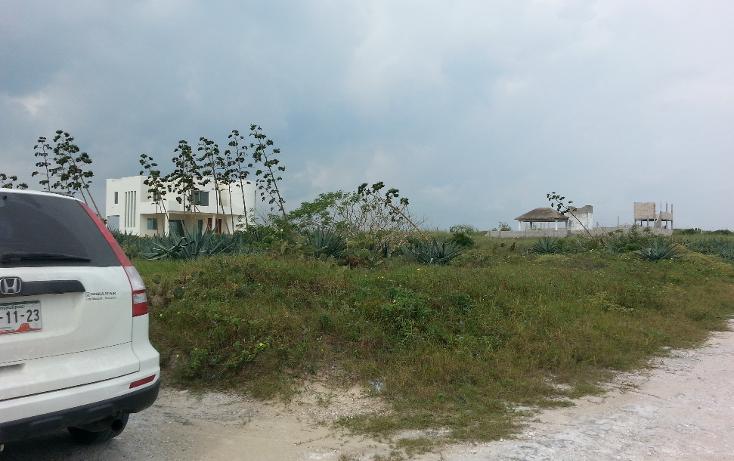 Foto de terreno habitacional en venta en  , fundadores, altamira, tamaulipas, 1138991 No. 02