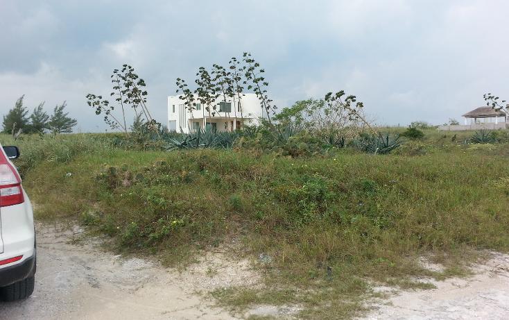 Foto de terreno habitacional en venta en  , fundadores, altamira, tamaulipas, 1138991 No. 03