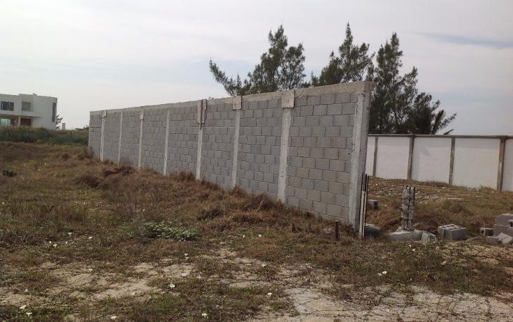 Foto de terreno habitacional en venta en  , fundadores, altamira, tamaulipas, 1301913 No. 03