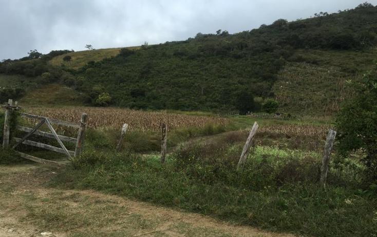Foto de terreno comercial en venta en  , gabriel esquinca, san fernando, chiapas, 1496941 No. 02