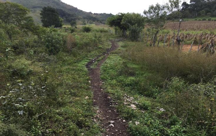 Foto de terreno comercial en venta en  , gabriel esquinca, san fernando, chiapas, 1496941 No. 04