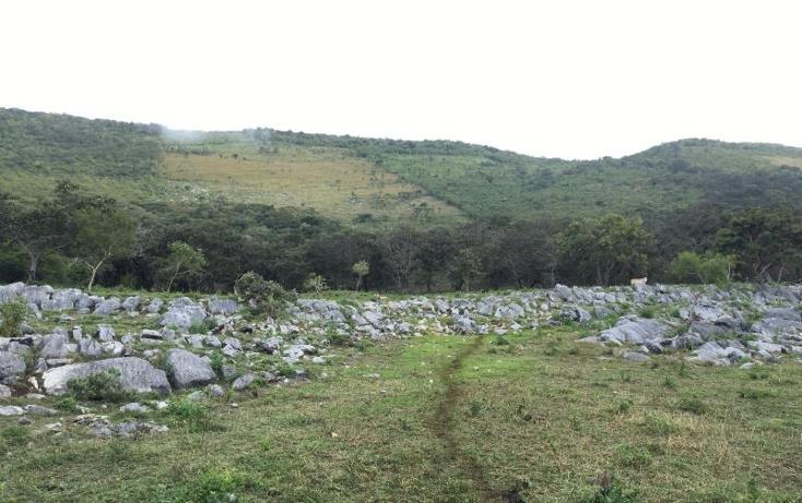 Foto de terreno comercial en venta en  , gabriel esquinca, san fernando, chiapas, 1496941 No. 07