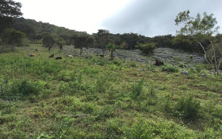 Foto de terreno comercial en venta en  , gabriel esquinca, san fernando, chiapas, 1496941 No. 14