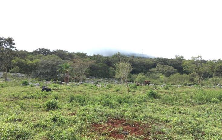 Foto de terreno comercial en venta en  , gabriel esquinca, san fernando, chiapas, 1496941 No. 25