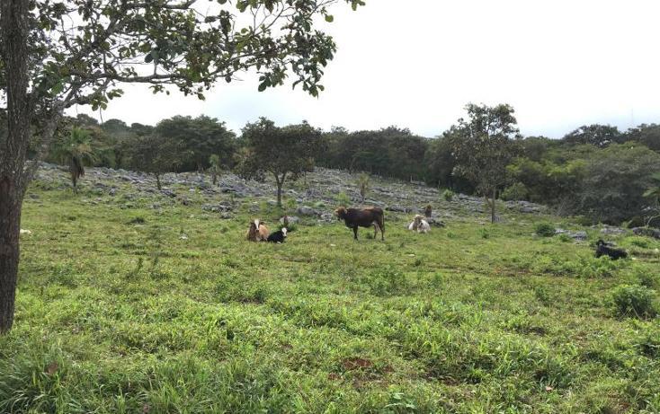 Foto de terreno comercial en venta en  , gabriel esquinca, san fernando, chiapas, 1496941 No. 26
