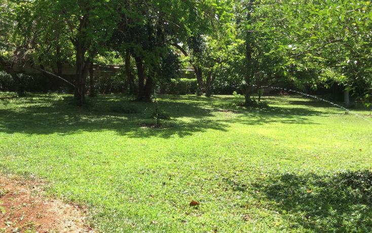 Foto de casa en venta en  , garcia gineres, mérida, yucatán, 1045377 No. 08