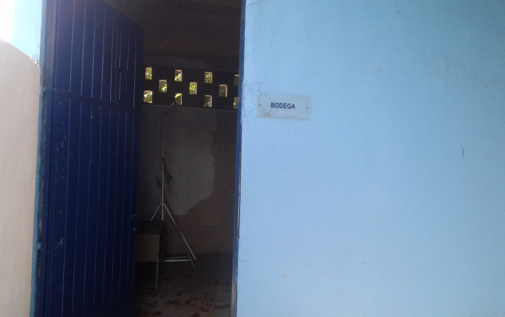 Foto de oficina en renta en  , garcia gineres, mérida, yucatán, 1168525 No. 11