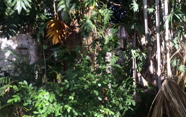 Foto de casa en venta en, garcia gineres, mérida, yucatán, 1460015 no 16