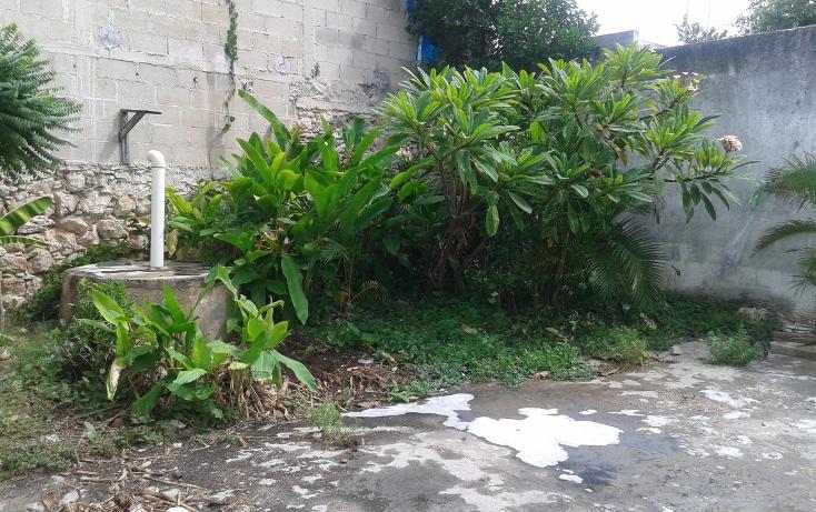 Foto de casa en venta en  , garcia gineres, mérida, yucatán, 1964865 No. 06