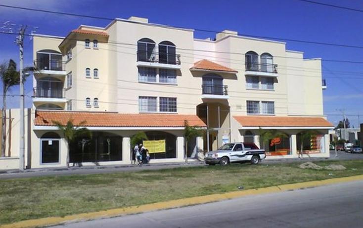 Foto de departamento en renta en  , garita de jalisco, san luis potosí, san luis potosí, 1077071 No. 15