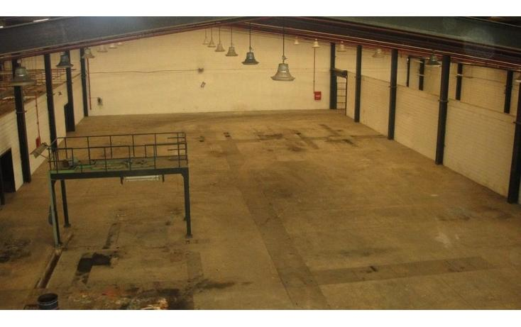 Foto de nave industrial en renta en  , garita otay, tijuana, baja california, 1679818 No. 23