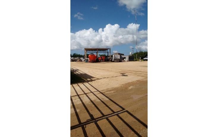 Foto de terreno industrial en renta en  , gavilán sur, agua dulce, veracruz de ignacio de la llave, 1498625 No. 04