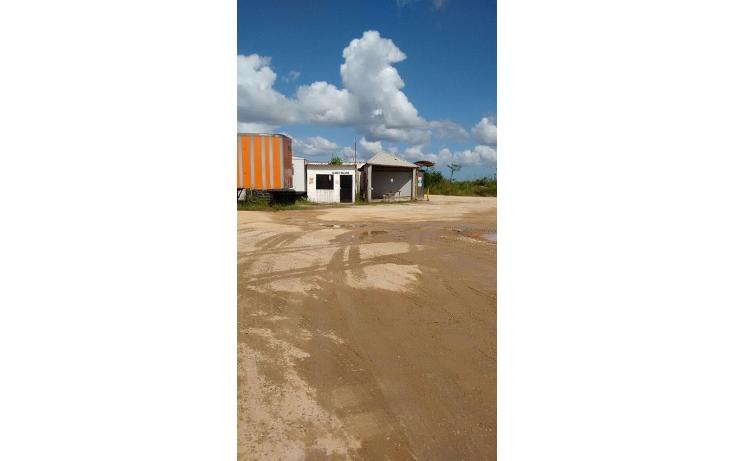 Foto de terreno industrial en renta en  , gavilán sur, agua dulce, veracruz de ignacio de la llave, 1498625 No. 10