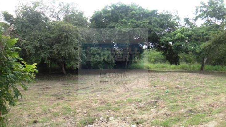Foto de terreno habitacional en venta en gaviotas 00, nuevo vallarta, bahía de banderas, nayarit, 1513165 No. 04