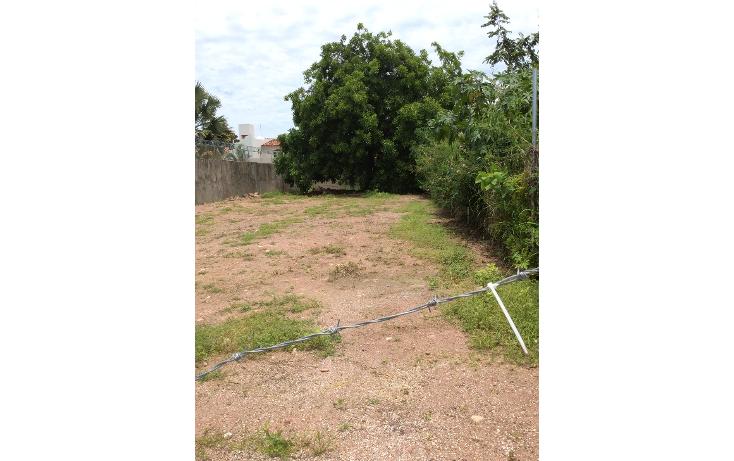 Foto de terreno habitacional en venta en  , gaviotas, puerto vallarta, jalisco, 1318107 No. 05