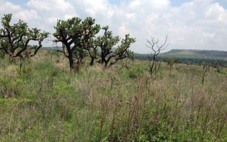 Foto de terreno habitacional en venta en, geovillas laureles del campanario, lagos de moreno, jalisco, 1317723 no 12