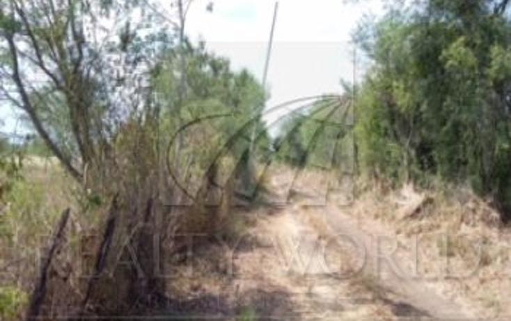 Foto de terreno habitacional en venta en, gil de leyva, montemorelos, nuevo león, 1217493 no 04