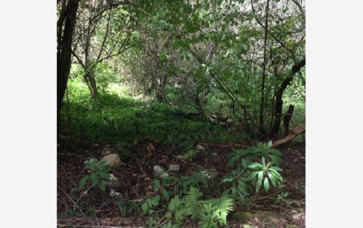 Foto de terreno habitacional en venta en girasoles 4, del santuario, san cristóbal de las casas, chiapas, 1351957 no 05