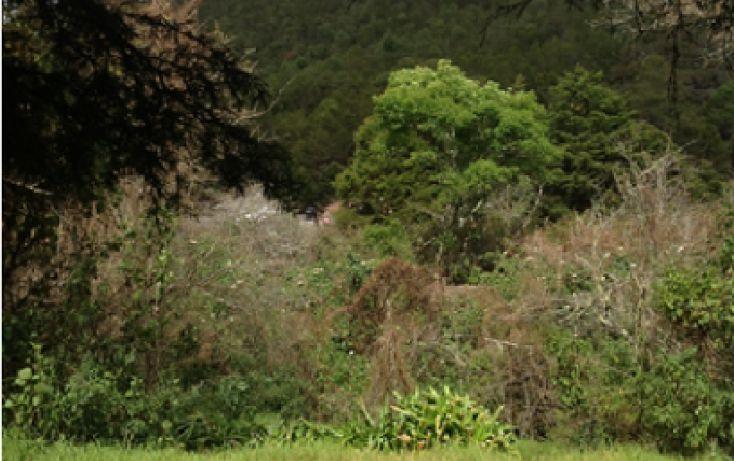 Foto de terreno habitacional en venta en girasoles 4, nueva maravilla, san cristóbal de las casas, chiapas, 1704884 no 02