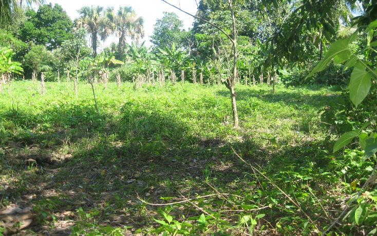 Foto de terreno comercial en venta en  , gonzalez 1a secc, centro, tabasco, 1334771 No. 03