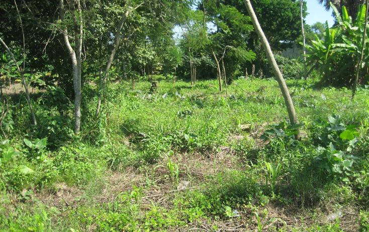 Foto de terreno comercial en venta en  , gonzalez 1a secc, centro, tabasco, 1334771 No. 07