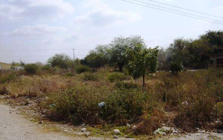 Foto de terreno comercial en venta en  , gonzalez, gonz?lez, tamaulipas, 1253471 No. 03