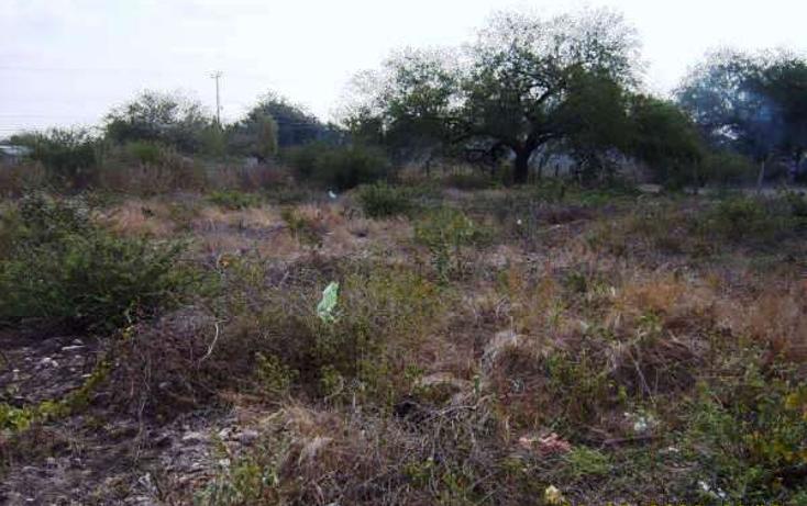 Foto de terreno comercial en venta en  , gonzalez, gonzález, tamaulipas, 2636561 No. 05