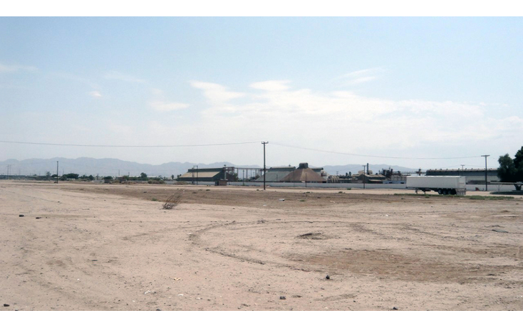 Foto de terreno comercial en venta en  , gonz?lez ortega, mexicali, baja california, 1191905 No. 05