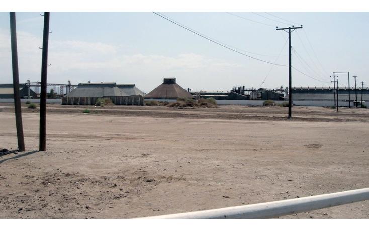 Foto de terreno comercial en venta en  , gonz?lez ortega, mexicali, baja california, 1191905 No. 06