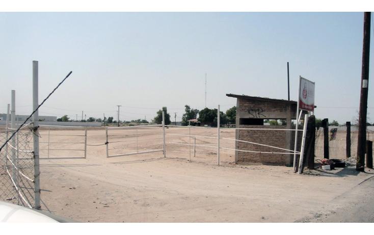 Foto de terreno comercial en venta en  , gonz?lez ortega, mexicali, baja california, 1191905 No. 08