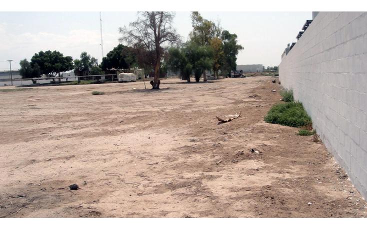 Foto de terreno comercial en venta en  , gonz?lez ortega, mexicali, baja california, 1191905 No. 09