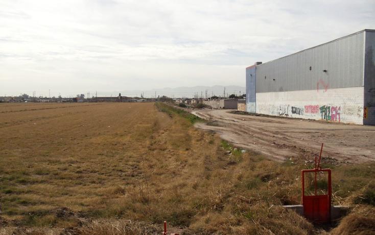 Foto de terreno comercial en venta en  , gonzález ortega norte, mexicali, baja california, 1192107 No. 02