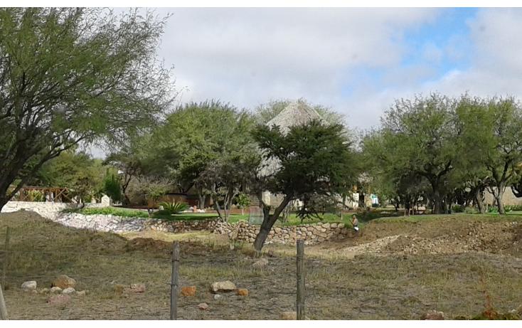 Foto de terreno habitacional en venta en  , gorriones, asientos, aguascalientes, 1078543 No. 11
