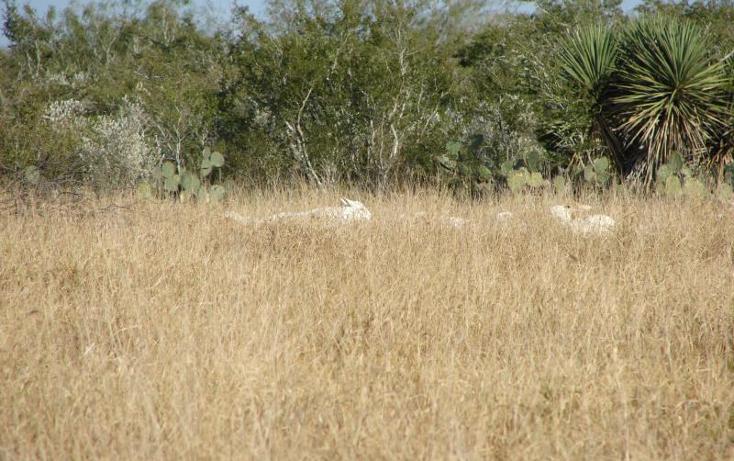 Foto de terreno comercial en venta en  , gral. lucio blanco, gustavo d?az ordaz, tamaulipas, 1041585 No. 04