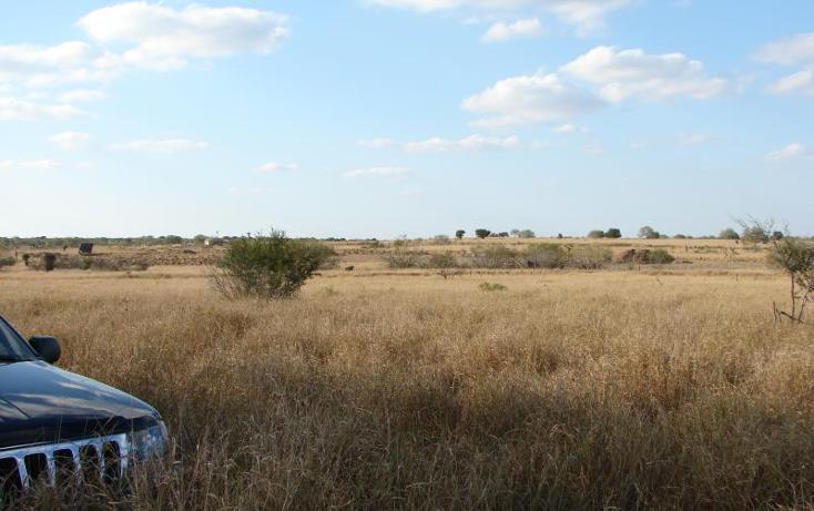 Foto de terreno comercial en venta en  , gral. lucio blanco, gustavo d?az ordaz, tamaulipas, 1041585 No. 05