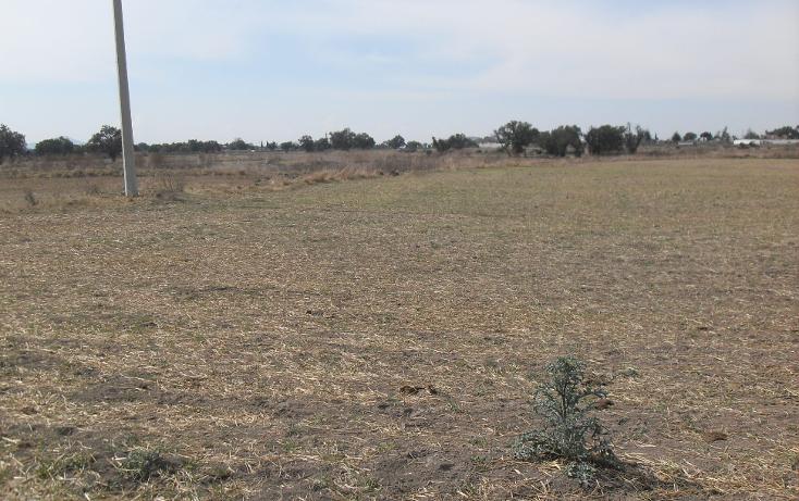 Foto de terreno habitacional en venta en  , granja los pinos, tolcayuca, hidalgo, 1120217 No. 03