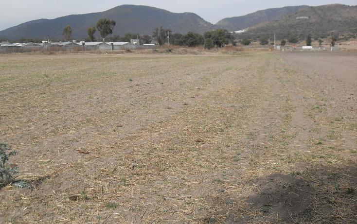 Foto de terreno habitacional en venta en  , granja los pinos, tolcayuca, hidalgo, 1120217 No. 04