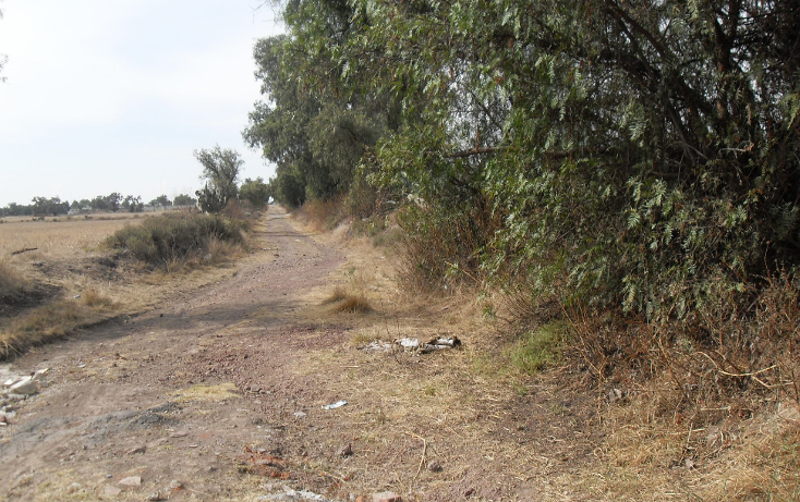 Foto de terreno habitacional en venta en  , granja los pinos, tolcayuca, hidalgo, 1120217 No. 06