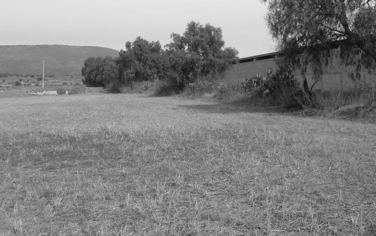 Foto de terreno habitacional en venta en  , granja los pinos, tolcayuca, hidalgo, 1120217 No. 10