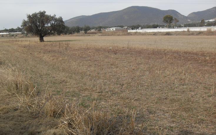 Foto de terreno habitacional en venta en  , granja los pinos, tolcayuca, hidalgo, 1120217 No. 11