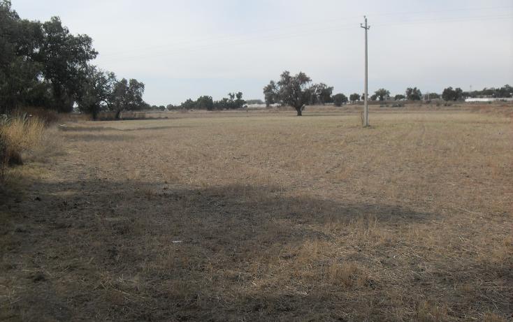Foto de terreno habitacional en venta en  , granja los pinos, tolcayuca, hidalgo, 1120217 No. 15