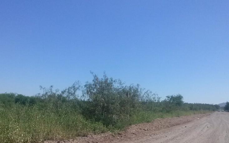Foto de terreno habitacional en venta en, granja villa verde, aldama, chihuahua, 772229 no 01