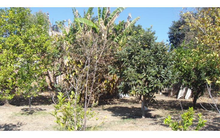 Foto de casa en venta en  , granjas campestre, león, guanajuato, 1227713 No. 07