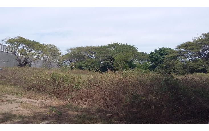 Foto de terreno habitacional en venta en  , granjas del márquez, acapulco de juárez, guerrero, 1624868 No. 03