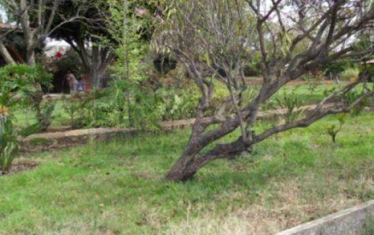 Foto de terreno habitacional en venta en granjas unidas 1, el parían, morelia, michoacán de ocampo, 220343 no 01