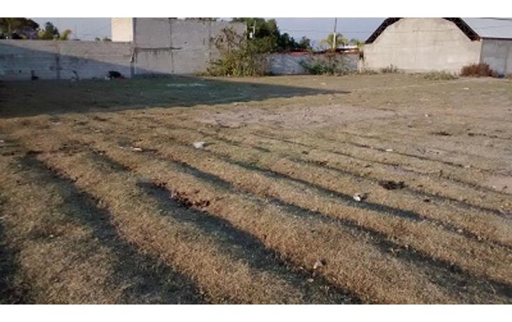 Foto de terreno habitacional en venta en  , guadalupe, acatzingo, puebla, 1282723 No. 01